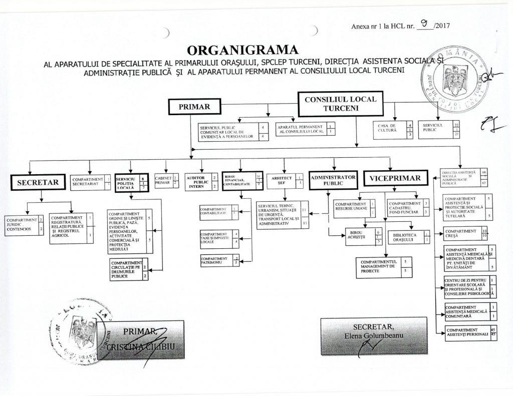 organigramaturceni